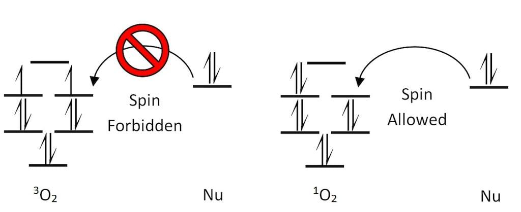 Triplet-Singlet Oxygen Reactivity Scheme